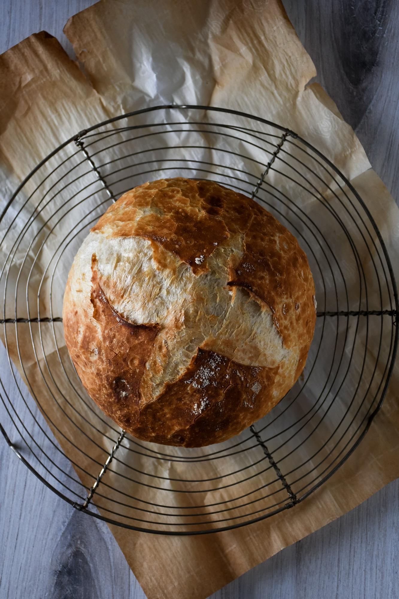 no-knead-dutch-oven-bread-0335 - Kitchen Joy